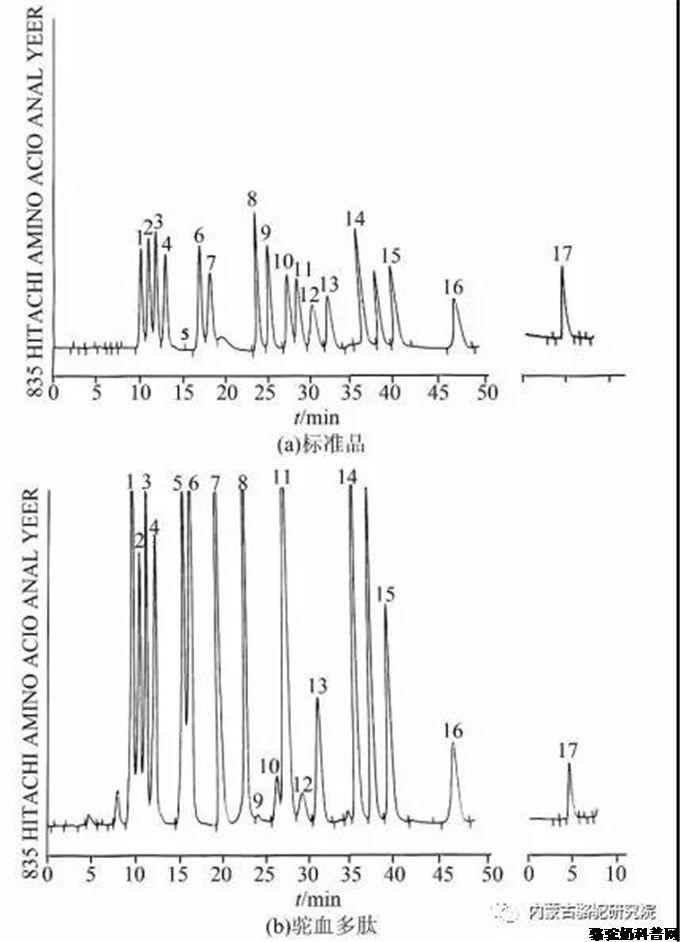驼血多肽的氨基酸含量分析