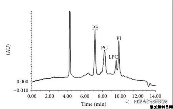骆驼乳磷脂脂质体中的依托泊苷对小鼠纤维肉瘤的作用