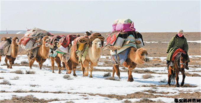 为什么哈萨克族人群糖尿病患病率低?