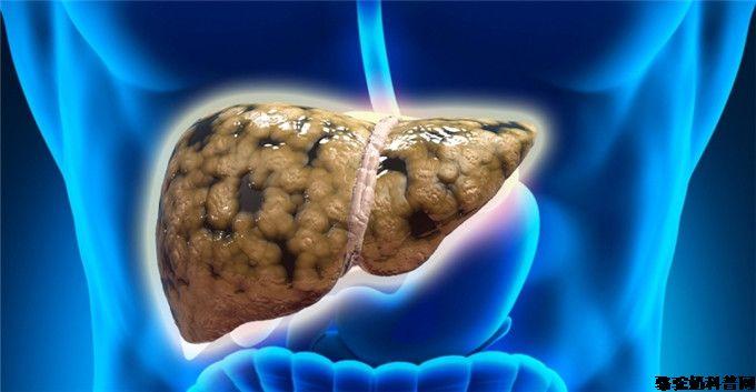 骆驼乳能改善实验性非酒精性脂肪肝患者的脂